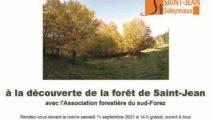 Sortie en forêt